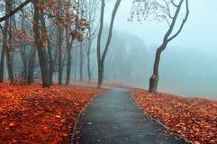 秋天有雾的胡同-停放在冷的口气的秋天风景 秋天自然视图 图库摄影