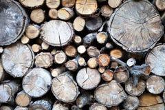 秋天木头 库存图片