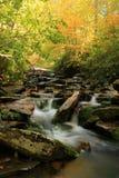秋天来到大烟雾弥漫的山脉国家公园 库存图片