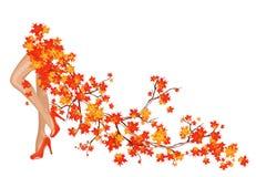 秋天来 库存照片
