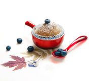秋天杯形蛋糕蓝莓 库存图片