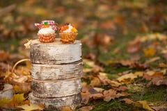 秋天杯形蛋糕 免版税库存照片