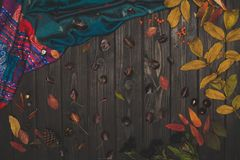 秋天构成和织品 图库摄影