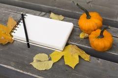 秋天构成在有叶子的笔记本和南瓜公园 库存照片