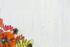 秋天构成在白色木背景离开和南瓜与文本的空间 免版税库存照片