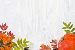 秋天构成在白色木背景离开和南瓜 免版税库存图片
