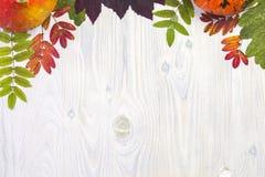 秋天构成在白色木背景离开和南瓜 免版税图库摄影
