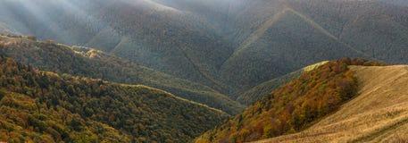 秋天构成山本质 库存照片
