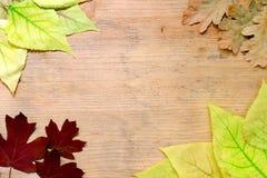 秋天构成-黄色和红色框架在木背景离开 复制空间 秋天背景特写镜头上色常春藤叶子橙红 免版税库存图片