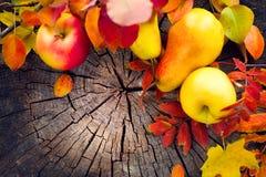 秋天果子和五颜六色的叶子在老破裂的木背景 秋天 感恩 免版税库存照片