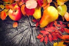 秋天果子和五颜六色的叶子在老破裂的木背景 秋天 感恩 免版税图库摄影