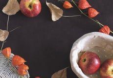 秋天果子和烘干在背景的叶子 免版税图库摄影