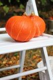 秋天果子在庭院里 免版税图库摄影