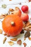 秋天果子在庭院里 免版税库存照片