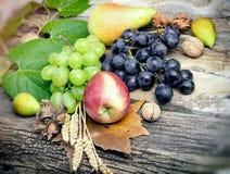 秋天果子,在土气木桌上的有机季节性食物 库存照片