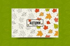 秋天枫叶样式 秋天留下无缝的样式 与叶子纹理的季节性网横幅模板 向量 皇族释放例证