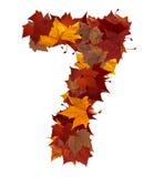 秋天查出的叶子第七 库存照片