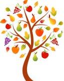 秋天树例证,苹果树,果树园树 免版税库存照片