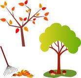 秋天树例证,绿色树 免版税库存图片