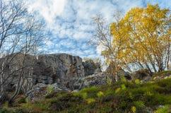秋天树和岩石 免版税库存照片