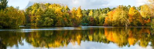 秋天树和池塘的图象 免版税库存照片