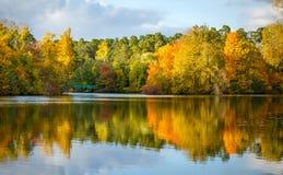 秋天树和池塘的图象 免版税库存图片