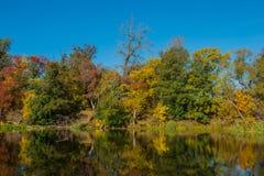 秋天树和河 免版税库存照片