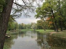 秋天树和湖在公园 库存照片