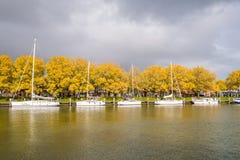 秋天树和风船在恩克赫伊森老港口, 免版税库存照片