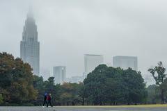秋天树在早晨时间的东京shinjuku国家公园 库存照片