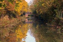秋天树在盛大联合运河反射了 免版税库存图片