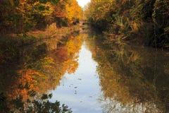 秋天树在盛大联合运河反射了 库存照片
