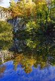 秋天树在quary水池的静止反射了 库存照片