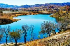 秋天树湖和小山 图库摄影