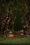 秋天树用莓果,下落的叶子,灯在绿色庭院里 免版税库存图片