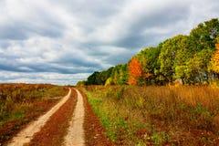 秋天树的明亮的颜色 秋天 免版税库存照片
