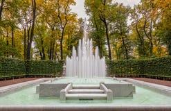 秋天树看法和大理石喷泉在夏天从事园艺 图库摄影