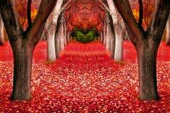秋天树风景 免版税库存图片
