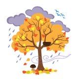秋天树,鸟飞行了秋天的去,季节性标志 免版税图库摄影