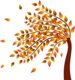 秋天树,黄色离开秋天树例证 免版税库存图片