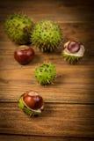 秋天栗子和橡子在桌上 免版税图库摄影
