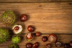 秋天栗子和橡子在桌上 免版税库存图片
