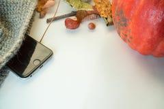 秋天栗子装饰葡萄10月石榴木头 库存图片
