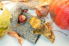秋天栗子装饰葡萄10月石榴木头 库存照片