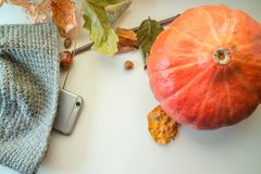 秋天栗子装饰葡萄10月石榴木头 免版税库存照片