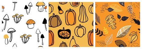 秋天样式集合 为墙纸,礼物纸,样式积土,网页背景,秋天贺卡完善 秋天 库存例证