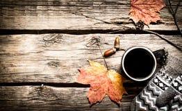 秋天样式 一杯与手套的热的咖啡 库存照片