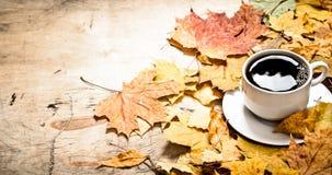 秋天样式 一杯与槭树的热的咖啡离开 免版税图库摄影