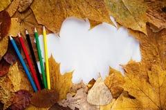 秋天框架叶子 免版税图库摄影