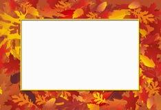 秋天框架照片 库存图片